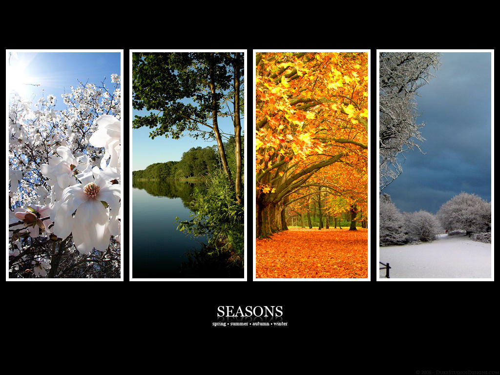 Seasons :: Full by DragonX141