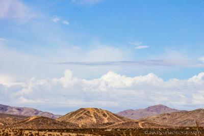 Desertscape I by dopey5150