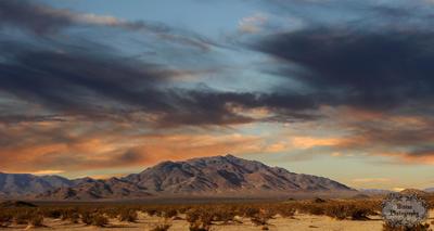Desert Dusk by dopey5150