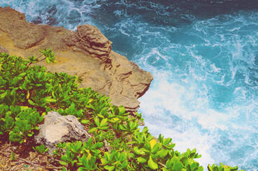 La'ie Point Cliff by drag-my-soul