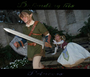 Defending his Princess... by ThePrincessZelda