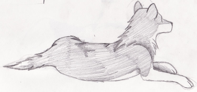 Wolf Laying Down - Back View by XxKaT2008xX on DeviantArt  Wolf Laying Dow...