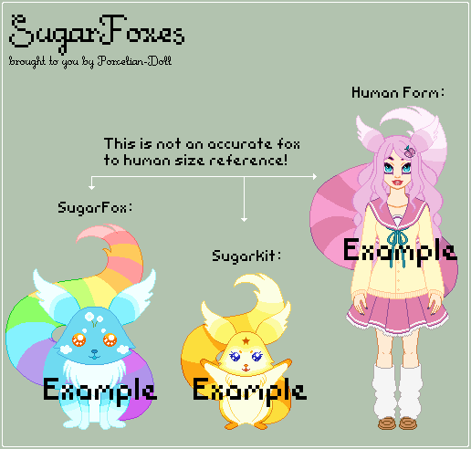 SugarFox Species Reference (Closed Species) by porcelian-doll