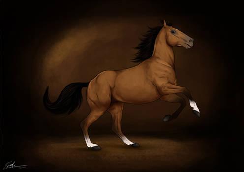 Commission: Grumpy Horse