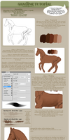 Shading Tutorial by chronically