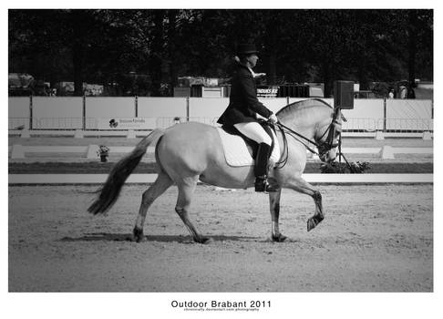 Outdoor Brabant IV