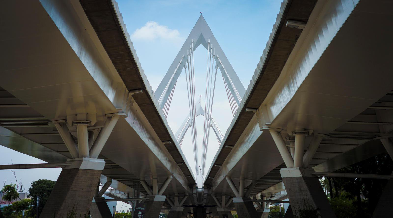 Bridge by paconavarro