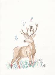 deer adventures I by D98ART