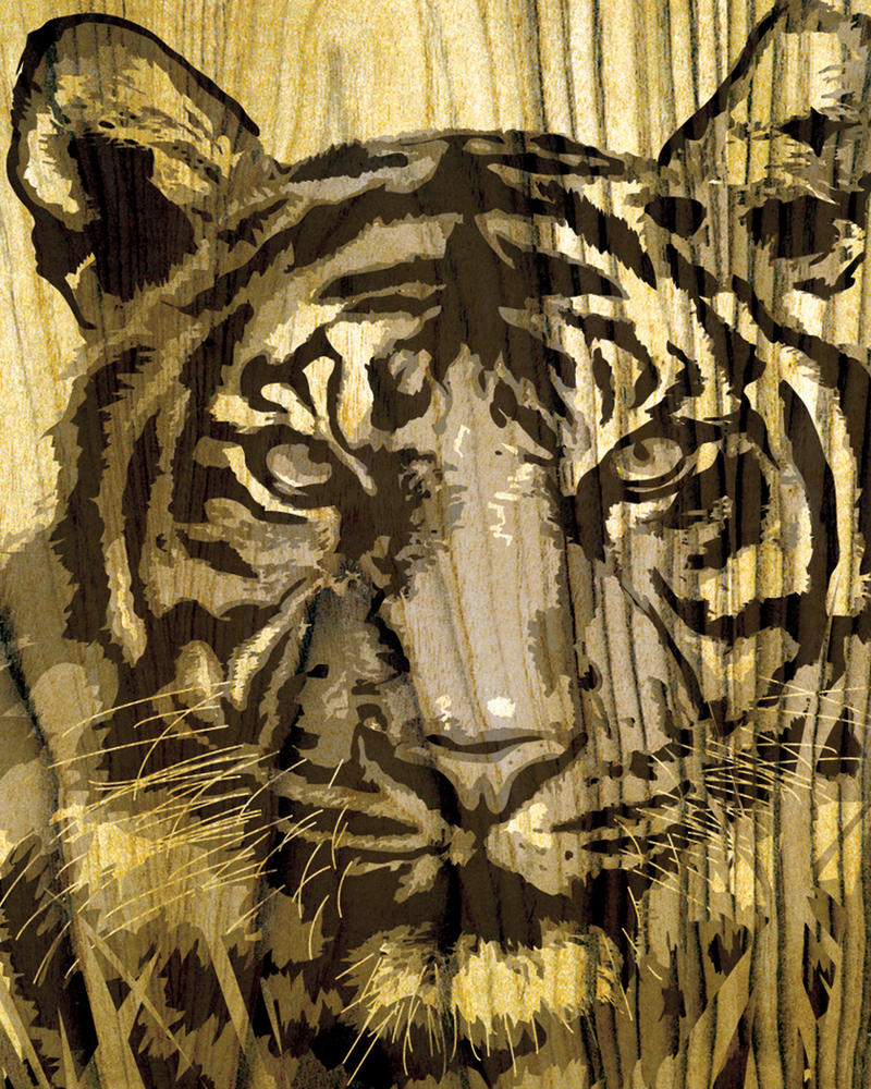 tiger wood cut by DUXZ