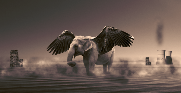 Winged Elephant by iwan96