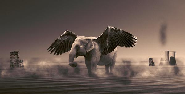 Winged Elephant by iwan96