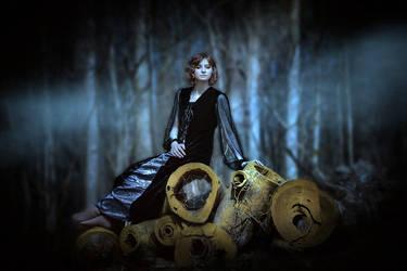 Dark Woods by nikongriffin