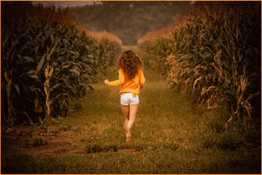Run Through The Corn Fields by nikongriffin