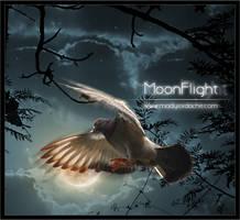 MoonFlight: PS Tutorial