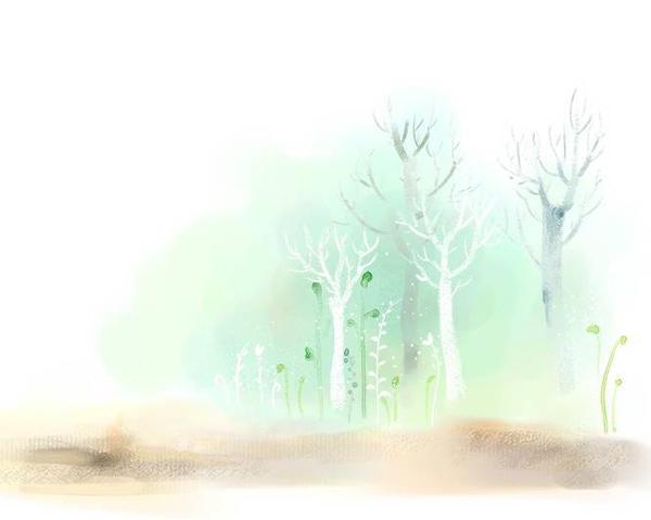 heavenly forest by dimasdwipramono
