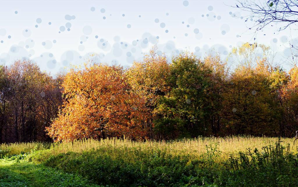 Bubbles-grass by dragon-fire