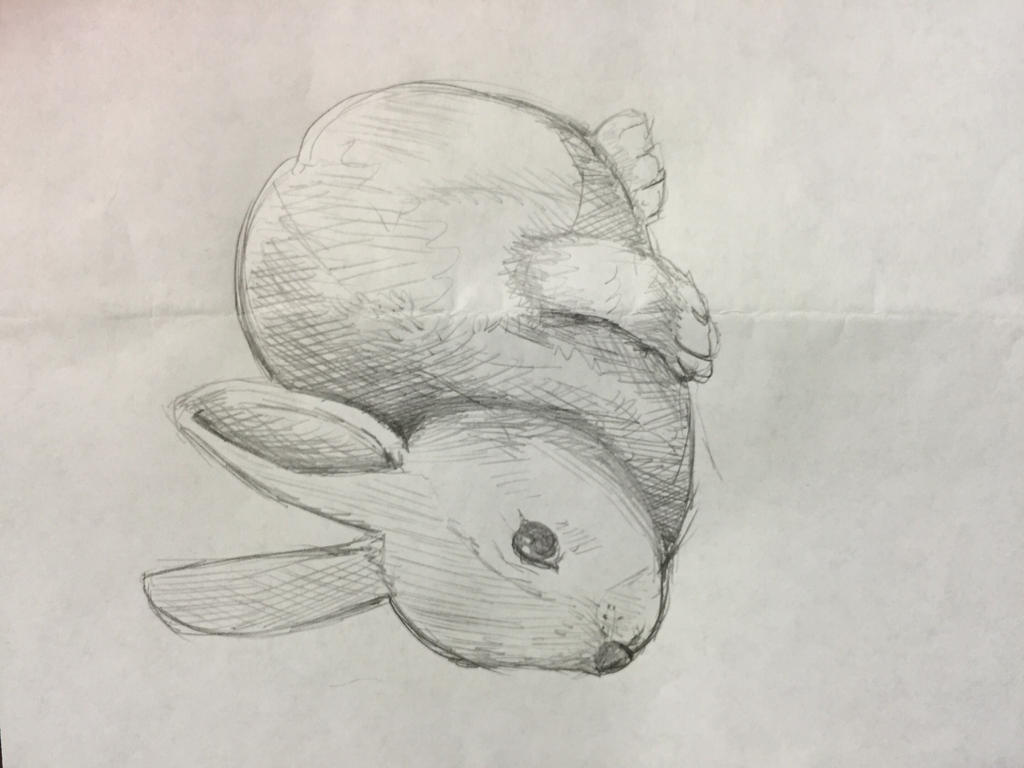 Bunny by Jennifer1098