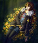 Flowerfell - secret garden