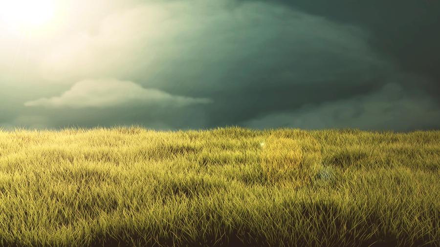 Grass Landscape Grass landscape by tristanmatthias on deviantart grass landscape by tristanmatthias workwithnaturefo