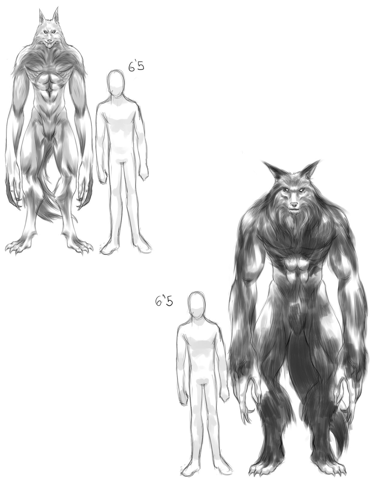 male_moon_clan_concepts_a_by_obsidiantra