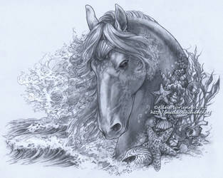 Seahorse by Saimain