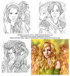 Digital Sketch Commissions