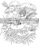 Art of Meadowhaven Coloring Page: Mushroom Faerie