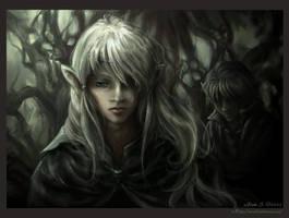 The Prince's Shadow