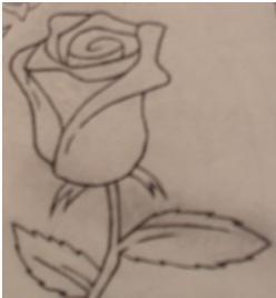 Rose by Jaina01
