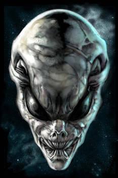 The Grey Alien