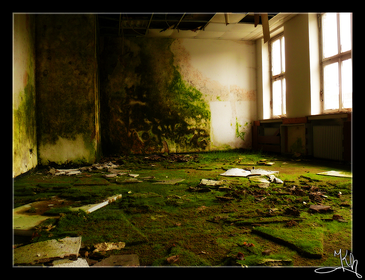 Nature's Room by Khalliys