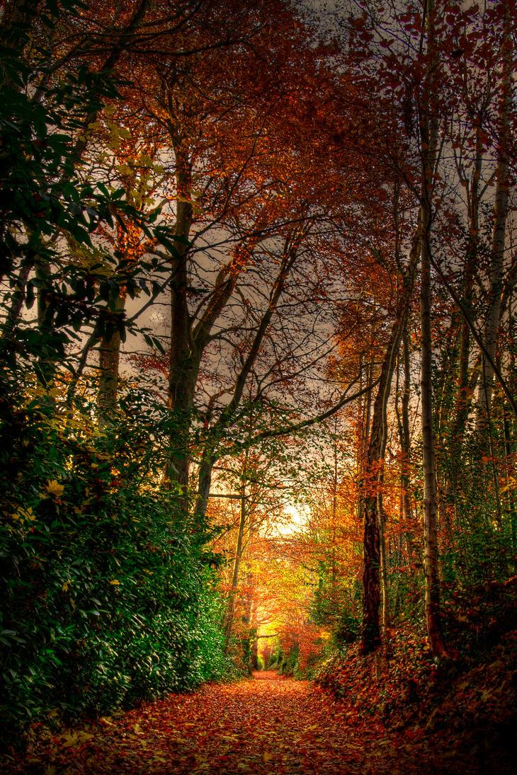 Thousand shades by Tazmaniac13