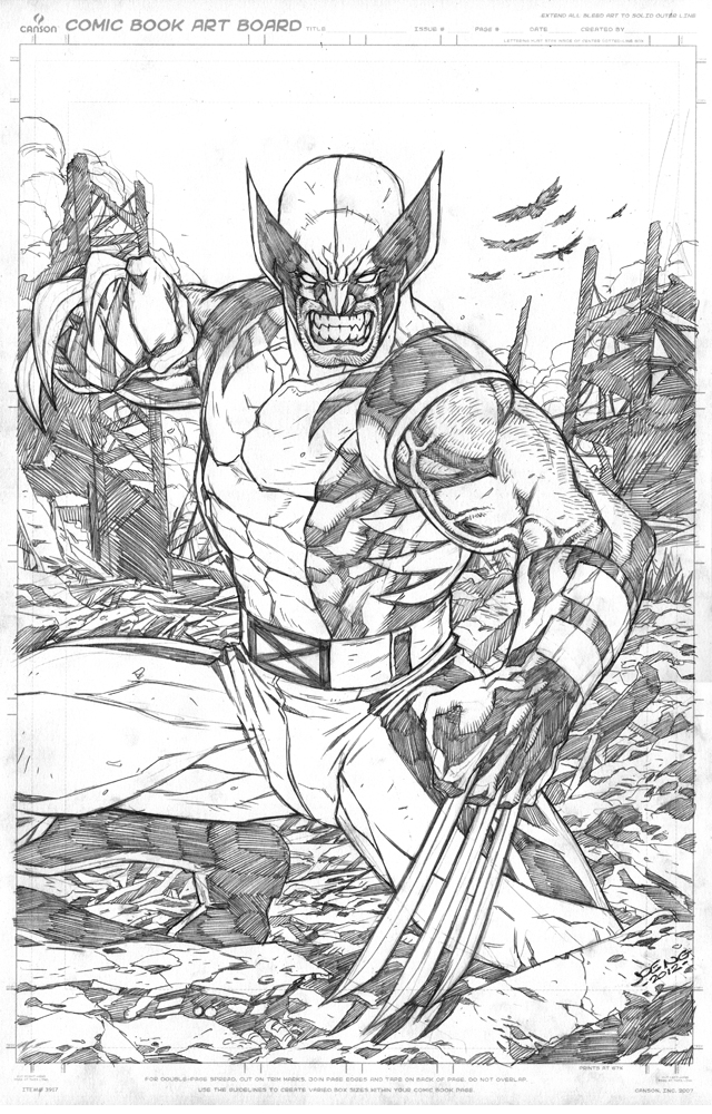 Wolverine by NgBoy