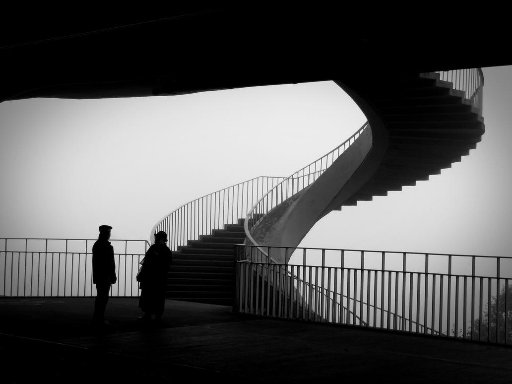 foggy day by ZLysy