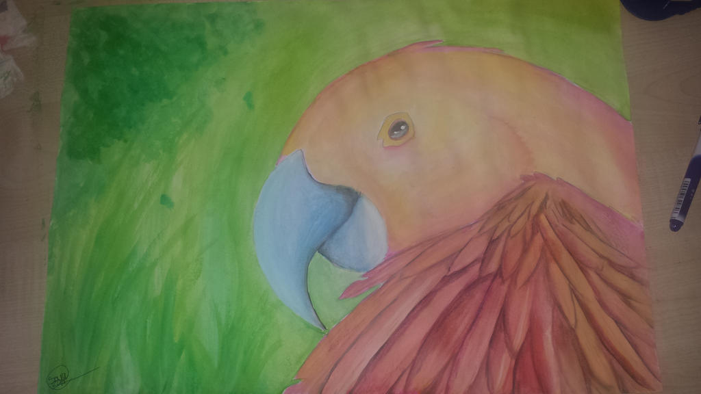 parrot watercolor by Kisara16