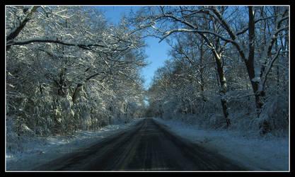 Winter Drive by badman22