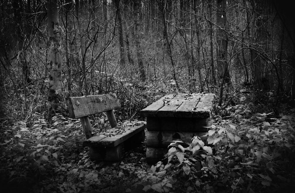 The forgotten place by Caillean-Photography