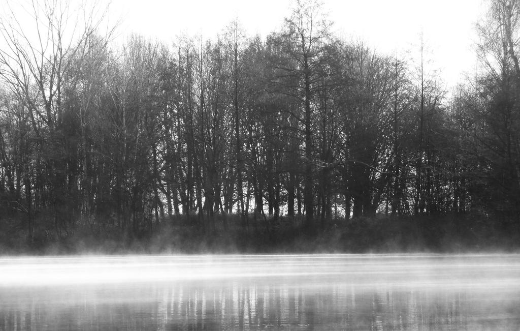 Fog on the water by Luna-Caillean