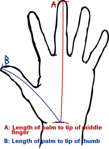 Hand measure by ShadowArktis