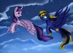 Commission: Night sky