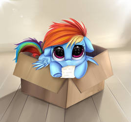 Free Pony