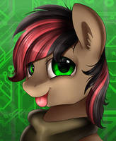Portrait Comm: Cyberstorm by pridark