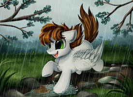 <b>Comm: Playing In Some Puddles</b><br><i>pridark</i>