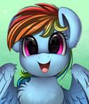 Rainbow Dashie by pridark