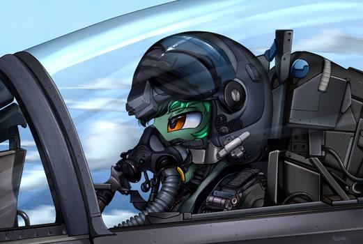 Comm: Pilot