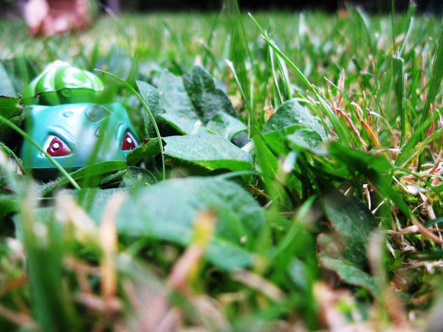 A wild BULBASAUR appeared by puffofillogic