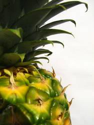 ananas by za-ra