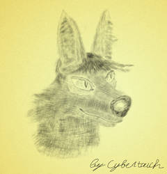 Sketch: Karbus