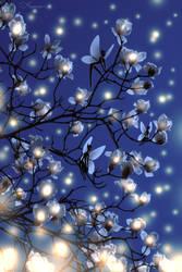 Fairy Lights by Aeonae