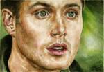 Jensen by staseykinney